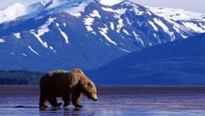 Alaska, descoperită acum 272 de ani