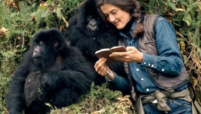 16 ianuarie – Dian Fossey