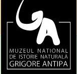 Antipa logo
