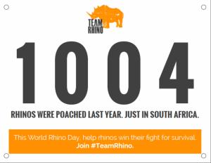 rino africa de sud