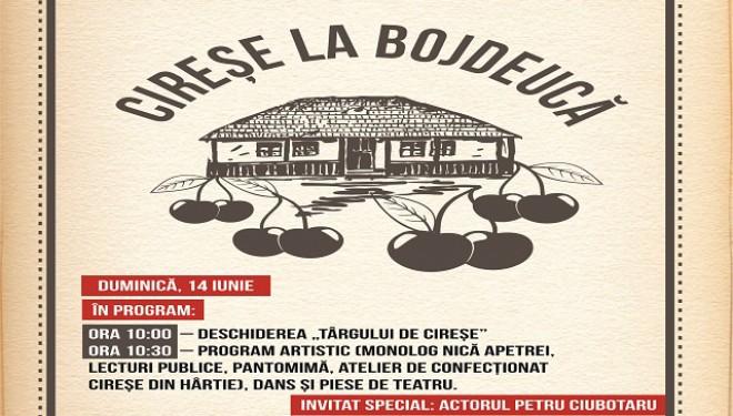 Târg de cireșe la Bojdeuca lui Ion Creangă, ediția a II-a