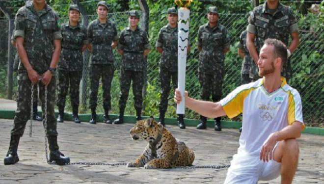 De ce a fost ucis jaguarul Juma?