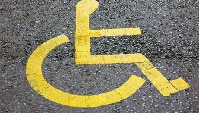 Curriculumul şcolar pentru copiii cu dizabilităţi: nevoi şi perspective pentru dezvoltare