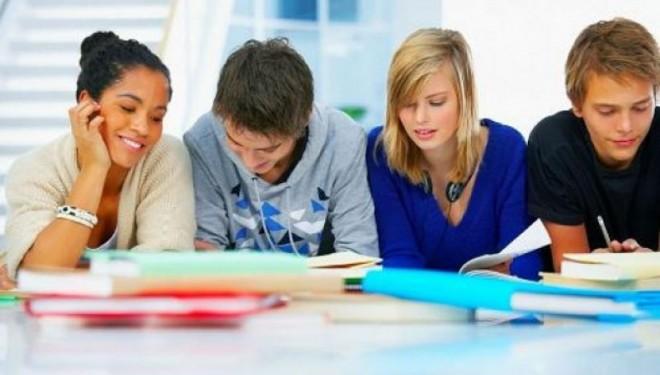 Problemele elevilor din județul Timiș ajung să fie cunoscute