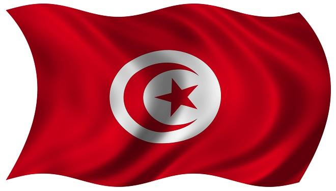 Bucurie în Tunisia – o nouă constituţie