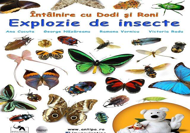 Explozie de insecte, la Antipa