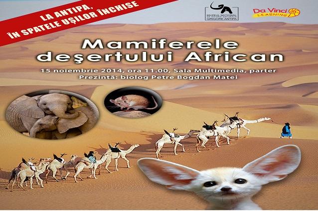Vreți să vă împrieteniți cu mamiferele deșertului african?