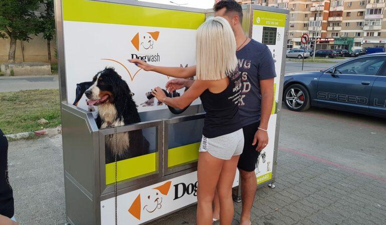 Orașele unde îți poți spăla câinele la un automat pentru patrupede
