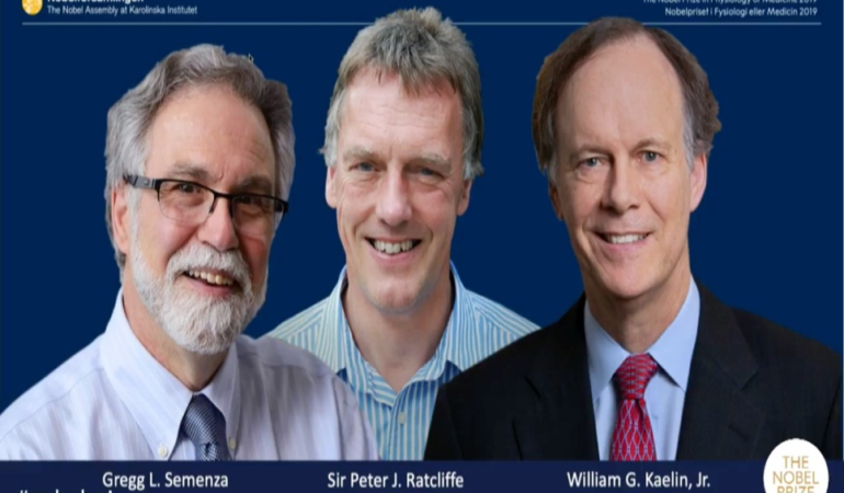 Nobelul pentru medicina 2019– noi strategii de combatere a cancerului