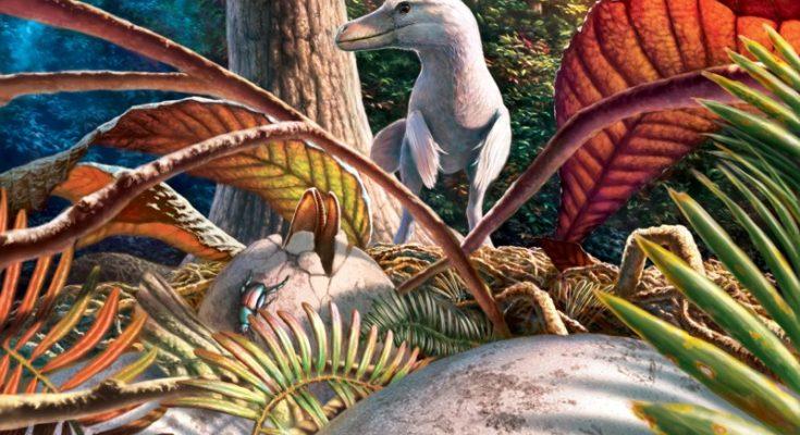 Dinozauri mici cât găinile au trăit în zona României