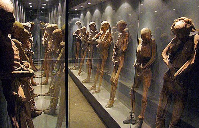 Dispariţie ieșită din comun în Mexic –  22 de mumii s-au… evaporat