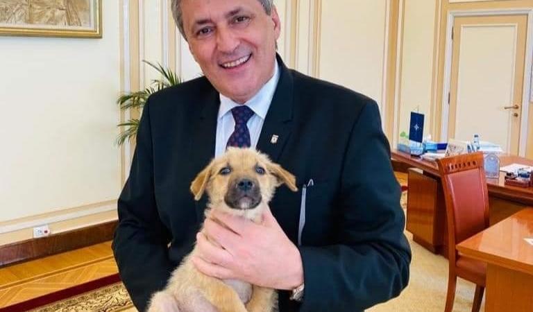 Marcel Vela înființează Poliția Animalelor. Ministerul Afacerilor Interne a adoptat un cățeluș