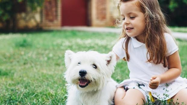 Soluţia cea mai bună când micuţii vor câine, dar părinţii nu. O aplicație inedita