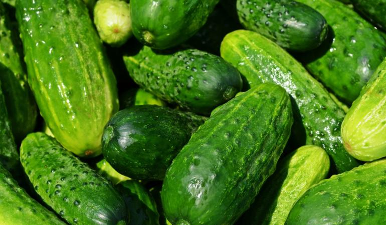 EXPRESIA SĂPTĂMÂNII – A vinde castraveți grădinarului