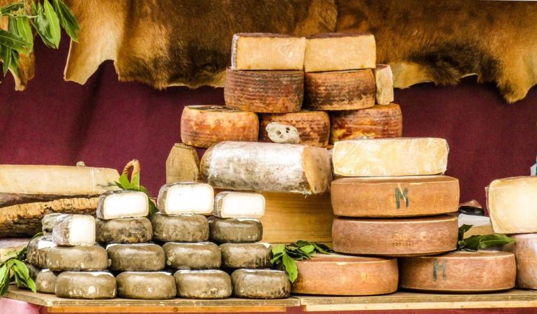 Vacanțe gastronomice în funcție de… brânză. Orientarea se face online