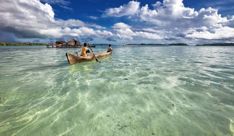 Un nou studiu genetic arată că navigatorii polinezieni au ajuns în America de Sud acum sute de ani