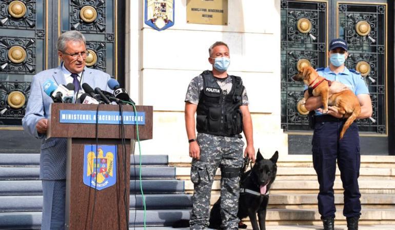 26 august – Ziua Internațională a Câinelui. Animalele vor avea Poliția lor