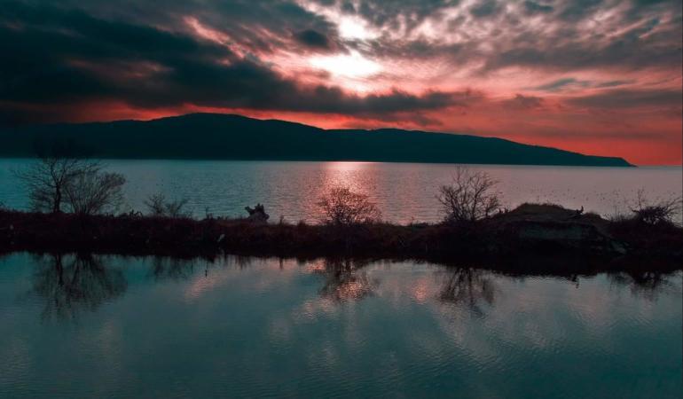 Descoperă Dunărea – concurs pentru copii