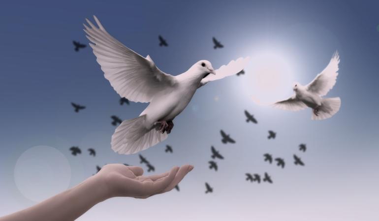 21 septembrie – Ziua Internațională a Păcii. Modelăm pacea împreună?
