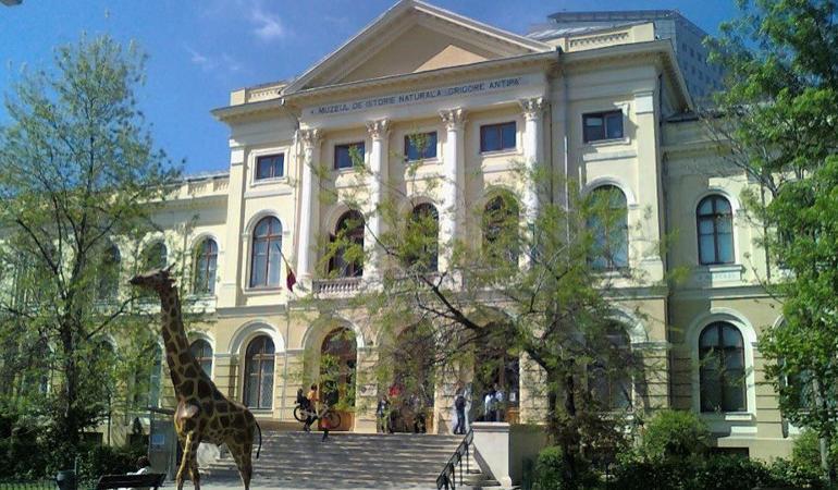 Muzeul Grigore Antipa din București prezintă expoziția Reptilia cu animale vii