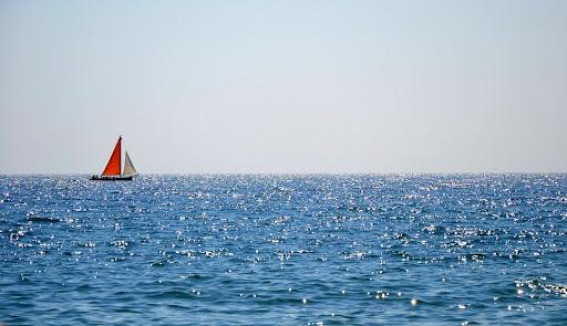 31 octombrie – Ziua Internațională a Mării Negre. Câte specii de pești trăiesc în ea?