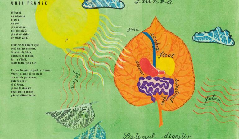 """""""Dejunul unei frunze"""" – joaca de-a cuvintele, o nouă carte de poezii pentru copii"""