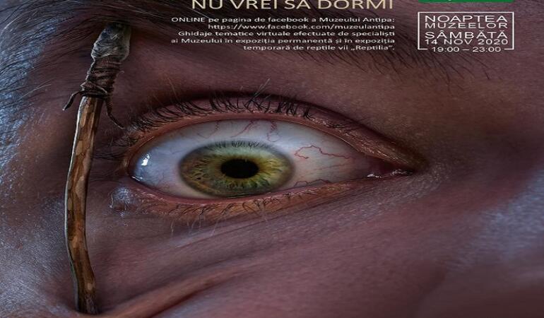 Noaptea Muzeelor. Ediții speciale ONLINE