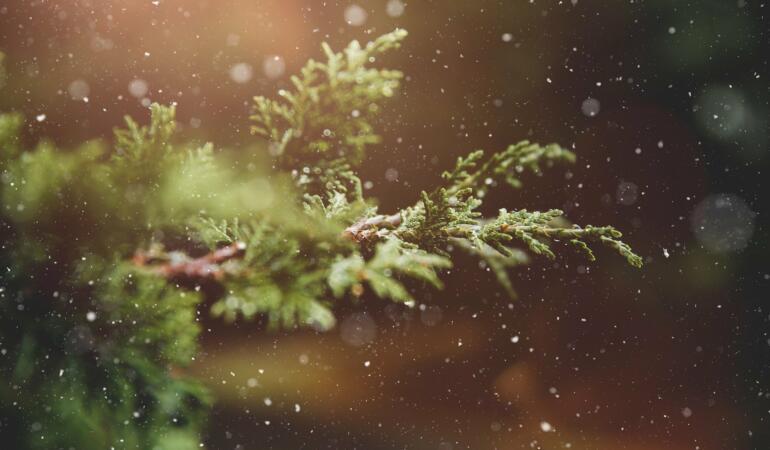 Atenție, vine frigul și cad primii fulgi. Iată avertizarea ANM