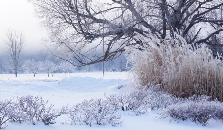 Se întoarce iarna pe bune.  Va fi ger. ANM a emis cod galben în toată țara