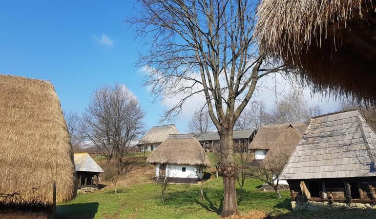 """""""Adoptă o grădină în satul de pe deal"""" – un proiect derulat în Maramureș"""