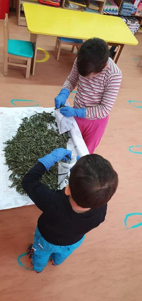 Copiii din Botoșani au vândut plante medicinale, iar banii i-au donat