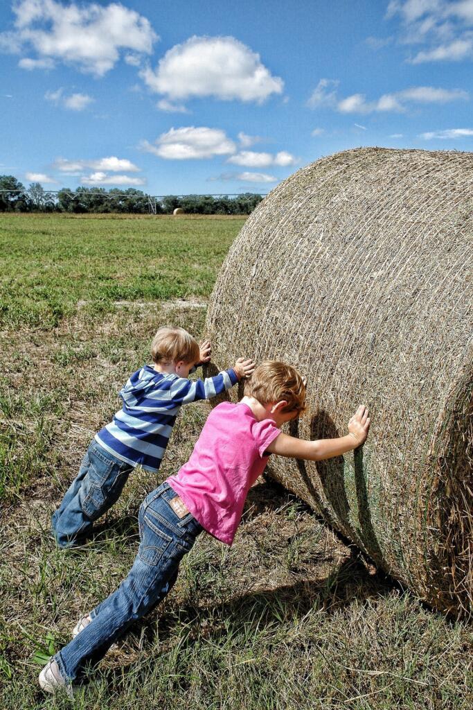 La nivel mondial numărul copiilor exploatați prin muncă a crescut