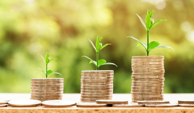 Elevii cer ca bursele să fie stabilite în funcție de salariul minim pe economie