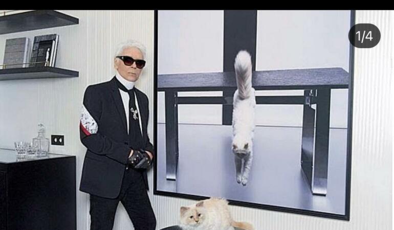 PRIN LUMEA MODEI. Karl Lagerfeld, designerul  de modă care și-a lăsat averea moștenire pisicii