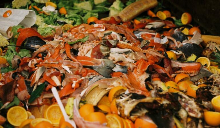 Astăzi sărbătorim Ziua Internațională de conștientizare a risipei alimentare