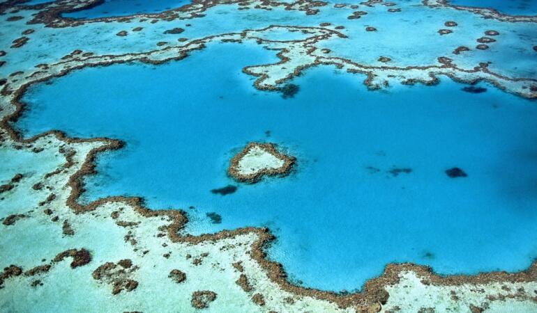 The Allen Coral Atlas