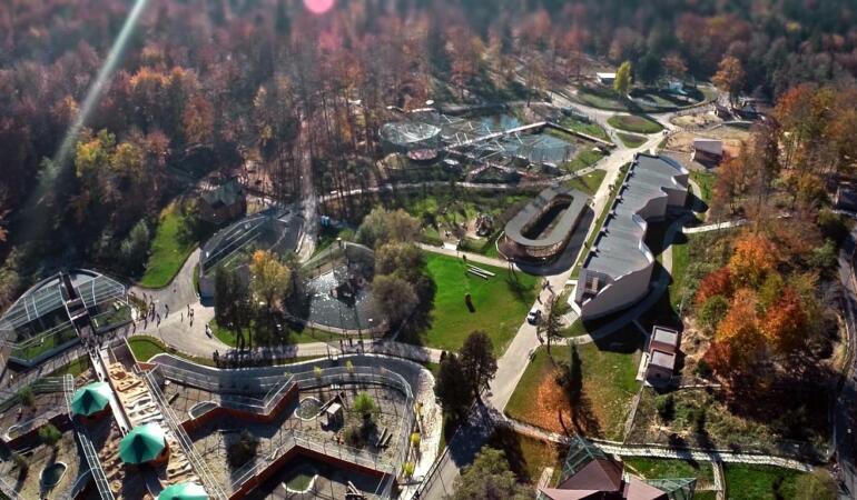 Grădina Zoologică Brașov are doi locuitori noi. S-au mutat din Ungaria