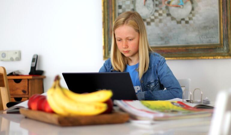 Zeci de clase din Satu Mare învață online din cauza infectărilor